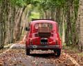 Tuning + Auto Zubehör - Tipps und Tricks rund um das Thema Autobatterie