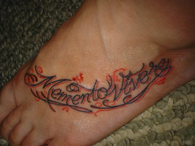 Mein Pit Bull Tattoo