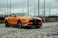 Felgen + Reifen - Mustang on Diamonds