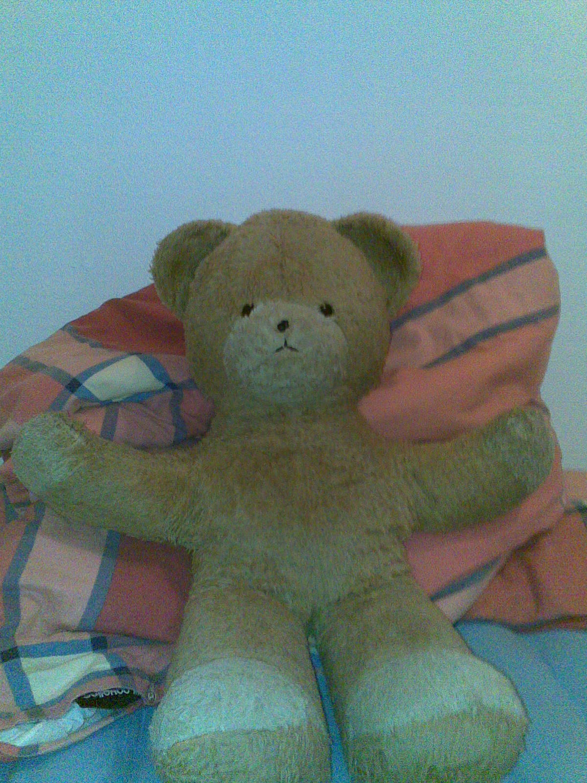 Name: teddy.jpg Größe: 1200x1600 Dateigröße: 351125 Bytes
