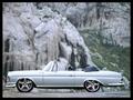Name: Mercedes_Benz_fertig.jpg Größe: 1600x1200 Dateigröße: 1193435 Bytes