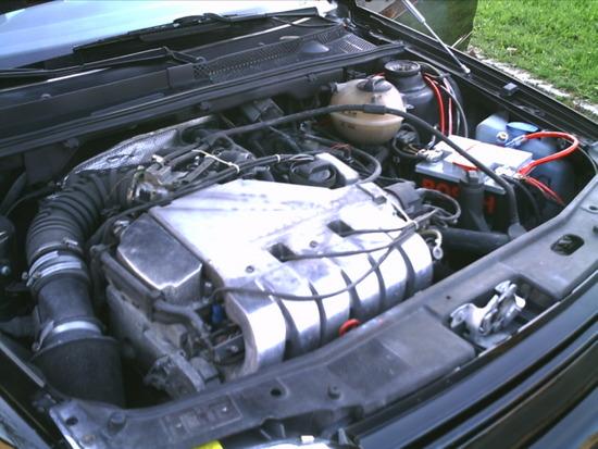 Name: VW_Golf_3_VR6_-_8.JPG Größe: 1280x960 Dateigröße: 321833 Bytes