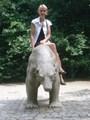 Name: zoo_008.JPG Größe: 480x640 Dateigröße: 110509 Bytes