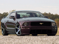 Name: Ford-Mustang-2005-009_copy.jpg Größe: 1600x1200 Dateigröße: 979760 Bytes
