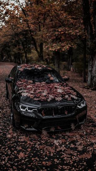 Name: BMW-M5-ZPFORGED17-BRGB-8.jpg Größe: 576x1024 Dateigröße: 248403 Bytes