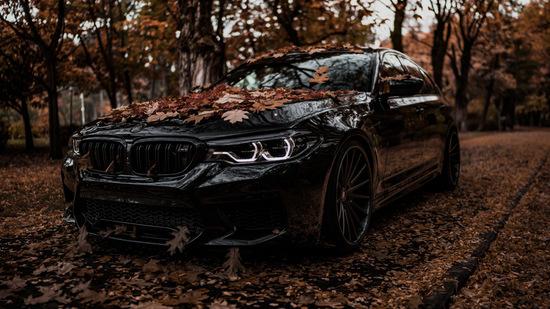 Name: BMW-M5-ZPFORGED17-BRGB-11.jpg Größe: 1024x576 Dateigröße: 247148 Bytes