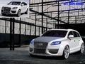Name: Audi_Q71.jpg Größe: 1024x768 Dateigröße: 234027 Bytes