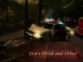 Name: dont_drink_and_drive_Kopie1.jpg Größe: 1600x1200 Dateigröße: 1452254 Bytes